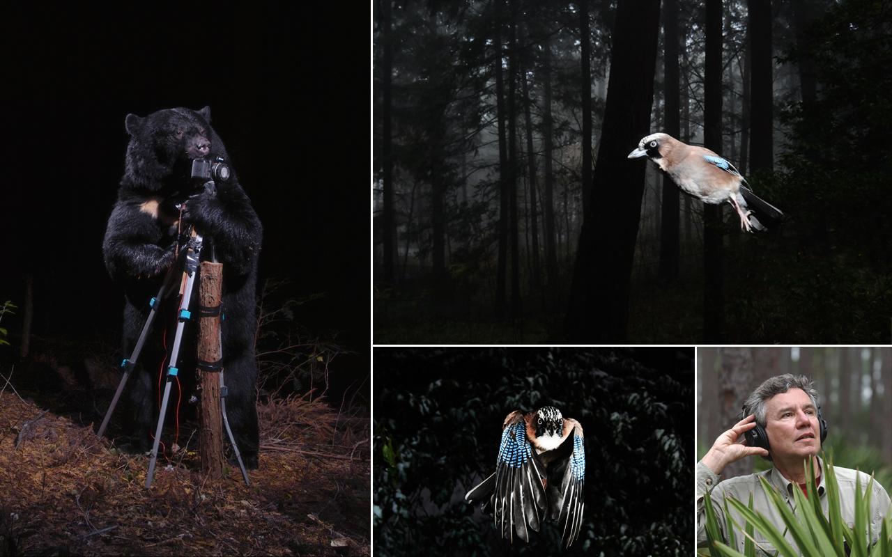 La Fondation Cartier exhibe la acústica de la naturaleza