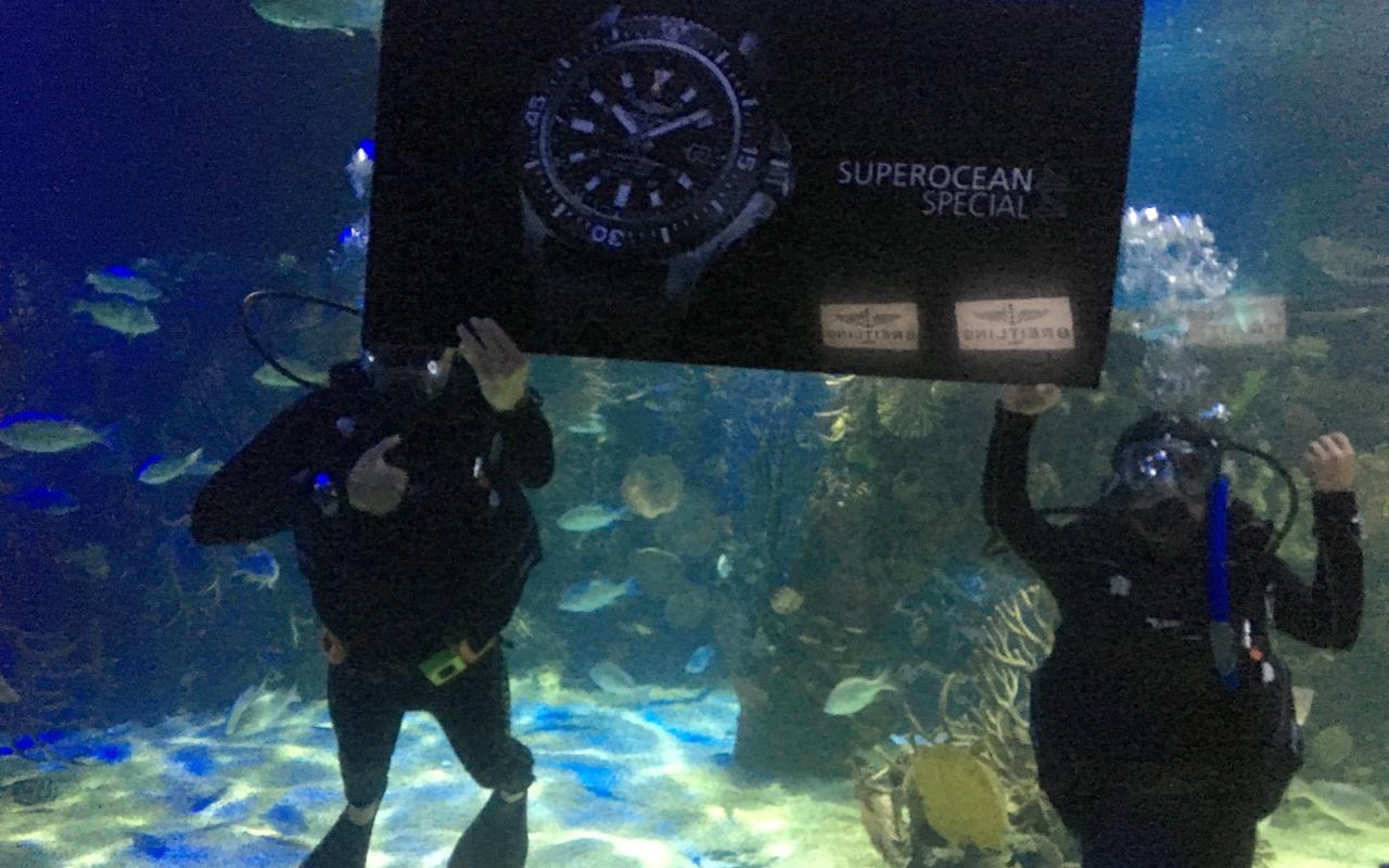 Breitling Superocean 44 Special llega a México