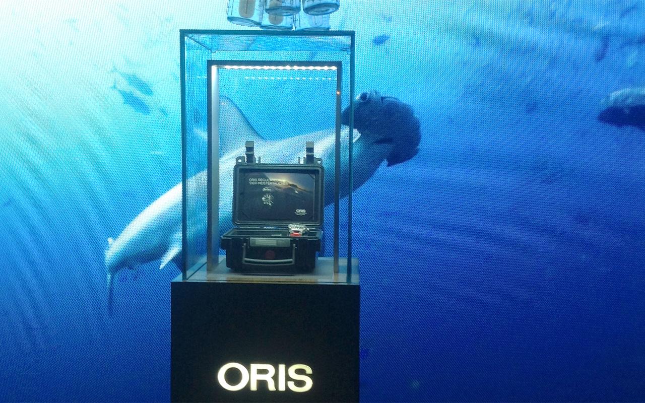 Oris y Gerardo del Villar, con el proyecto Desmytifying Sharks